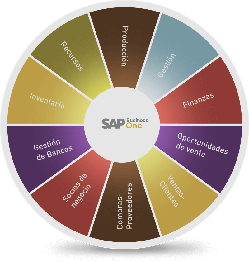 SAP-Business-one-grafica
